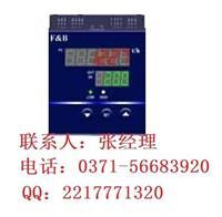 XMJ5000系列智流量积算显示控制仪,百特选型定做 XMJ5000系列