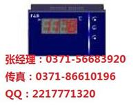 数显表 XMZ5000,百特正品折扣价 XMZ5000