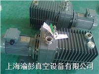 ALCATEL(阿爾卡特)真空泵維修及銷售維修服務 干泵,油泵,羅茨泵,