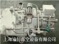 BUSCH普旭干泵維修,BUSCH普旭螺桿泵維修 0070A