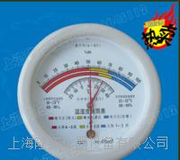 指针式温湿度表 HM10