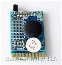 高性价比语音芯片AM4EC0317 AM4EC0317
