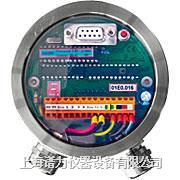 InPro8300 RAMS测量系统