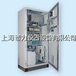 杜拉革HM-1400 TRX在线总汞分析仪