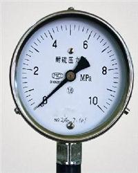 YTU-100S、YTU-150S 耐硫压力表 YTU-100S、YTU-150S