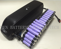 13S5P 48V Hailong Lithium Battery New Hl03 Downtube Battery Pack with Switch an