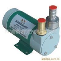 香港意捷12v/24v油泵SM香港油泵 12v/24v