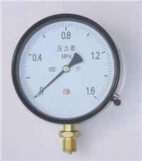不锈钢压力表 ST03