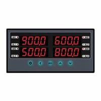 双回路数显仪,温湿度数显仪,迅鹏WPDAL WPDAL