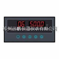 4-20mA热电偶温度巡检仪,迅鹏WPL8 WPL8