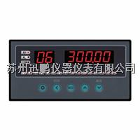 32路温度巡检仪/迅鹏WPLE-A08 WPLE