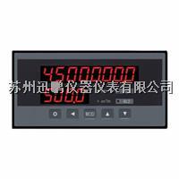 苏州迅鹏WPJ-D1V流量积算仪 WPJ