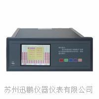 热处理记录仪/温度无纸记录仪/迅鹏WPR70A WPR70A