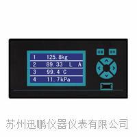 无纸记录仪,无纸温度记录仪,迅鹏WPR10 WPR10