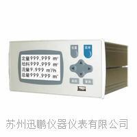 (迅鹏)WPR23定量控制记录仪 WPR23