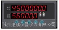 苏州迅鹏WPKJ-P1流量数显仪 WPKJ