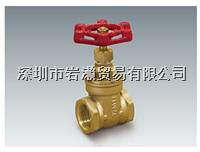 GTS-06 ,黄铜闸阀,FLOBAL福禄贝尔株式会社