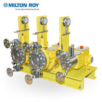 Milroyal D系列高性能液压隔膜计量泵 Milroyal D