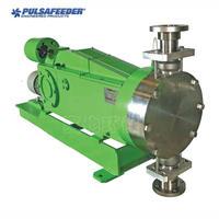 8480X-S-E 液壓平衡隔膜計量泵 8480X-S-E