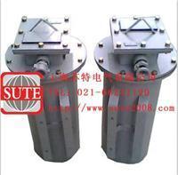 防爆变压器  SG系列