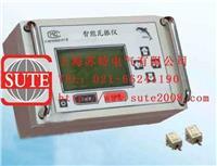 智能瓦振監測儀 TC4850WZ