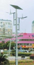 太阳能庭院灯生产厂家 TYN-TY004