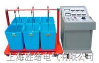 带电用绝缘测试装置 YTM-III