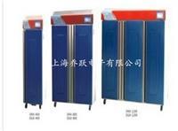 冷光源植物培养箱DGX-250 DGX-250