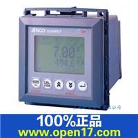 6309PDT 工业PH/溶氧仪