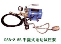 DSB手提式电动试压泵LYSY010 DSB