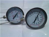 双金属温度计 WSS-300  WSS-481