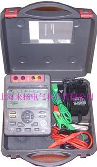 数显式绝缘电阻测试仪 LYZT