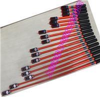 伸缩式声光交流验电器 SL
