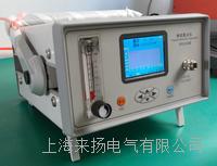 SF6微水测量仪 LYGSM-5000