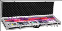 GPS卫星同步语音无线高压核相仪 LYWHX-9800
