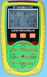 GC60二合一气体检测仪 GC60