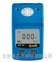 北京甲烷气体检测仪  GS10
