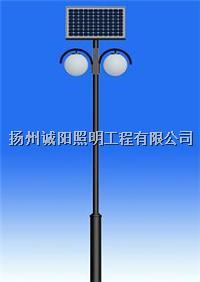 太阳能庭院灯 001