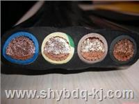 移动扁电缆|金山工业园区移动扁平橡胶电缆 YB/YBF/YBZ
