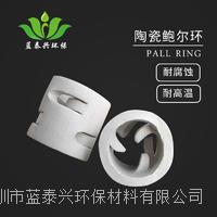 广东76mm80mm陶瓷鲍尔环耐高温抗压强度高耐腐蚀环保塔化工塔填料 LTX-CBE