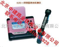 钢筋腐蚀测量仪 BJXS-1型