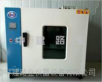 实验室涂料干燥箱 101-2型