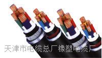 天津小猫牌YCFVRP电缆 YCFVRP电缆