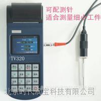 便携式测振仪  TV300
