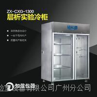 上海知信 層析柜ZX-CXG-1300