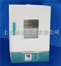 电热恒温干燥箱 202-00A
