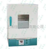 热空气消毒箱干烤灭菌箱 GRX-9073A