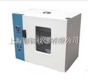 电热恒温鼓风培养箱 干燥箱