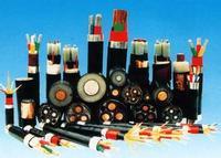 屏蔽控制电缆KVVP22_屏蔽控制电缆KVVP22价格 屏蔽控制电缆KVVP22_屏蔽控制电缆KVVP22价格