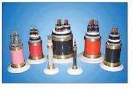 PTYYPTYY信号电缆价格PTYY铁路信号电缆厂家 PTYYPTYY信号电缆价格PTYY铁路信号电缆厂家